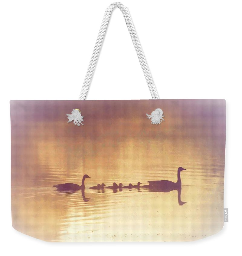 Duck Weekender Tote Bag featuring the photograph Duck Family by Bill Cannon
