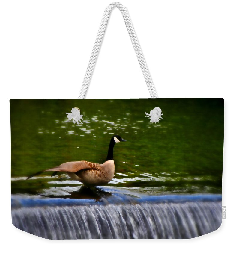Bakewell Weekender Tote Bag featuring the photograph Duck On The River Wye Waterfall - In Bakewell Peak District - England by Doc Braham