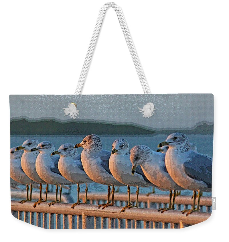 Seagull Weekender Tote Bag featuring the photograph Ducks In A Row by HH Photography of Florida