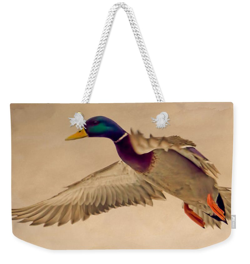 Duck Weekender Tote Bag featuring the photograph Ducks In Flight by Bob Orsillo