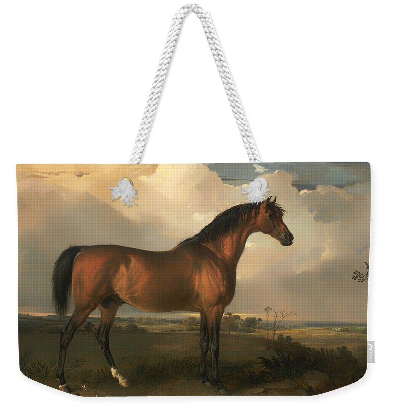 Painting Weekender Tote Bag featuring the painting Eagle - A Celebrated Stallion by Mountain Dreams