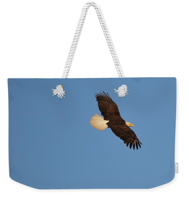 Eagle Weekender Tote Bag featuring the photograph Eagle Flight 2 by Bonfire Photography