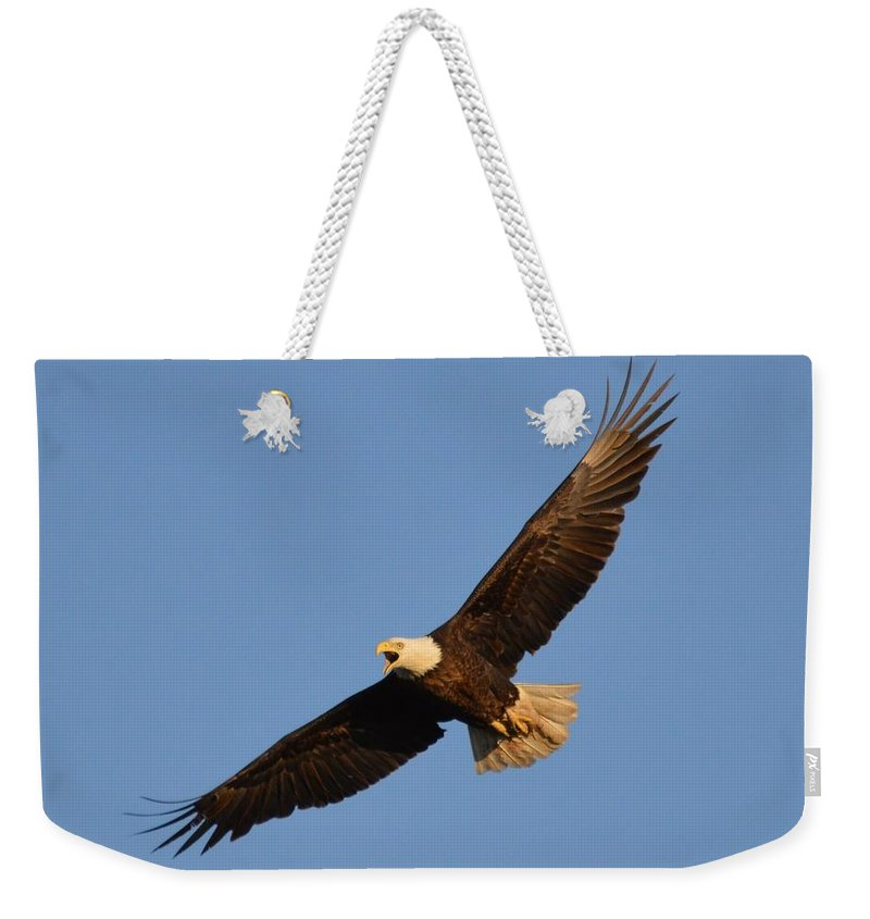 Eagle Weekender Tote Bag featuring the photograph Eagle Flight 5 by Bonfire Photography