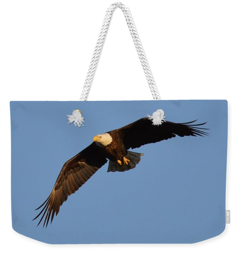 Eagle Weekender Tote Bag featuring the photograph Eagle Flight 6 by Bonfire Photography