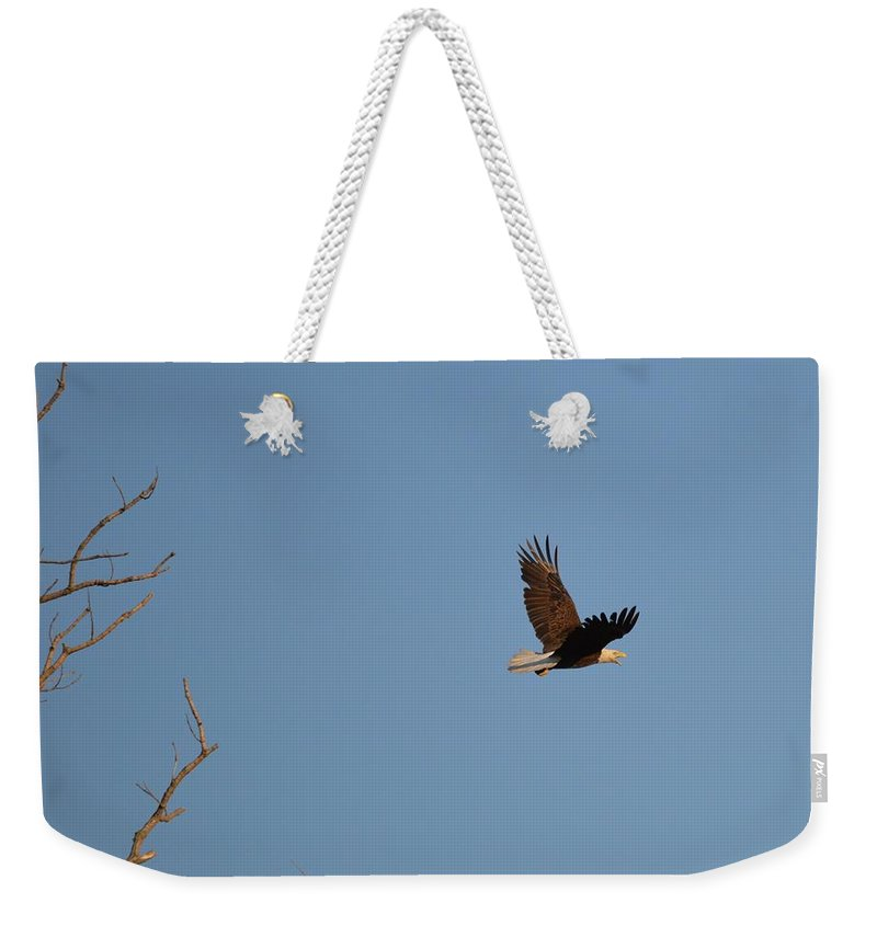 Eagle Weekender Tote Bag featuring the photograph Eagle Flight by Bonfire Photography
