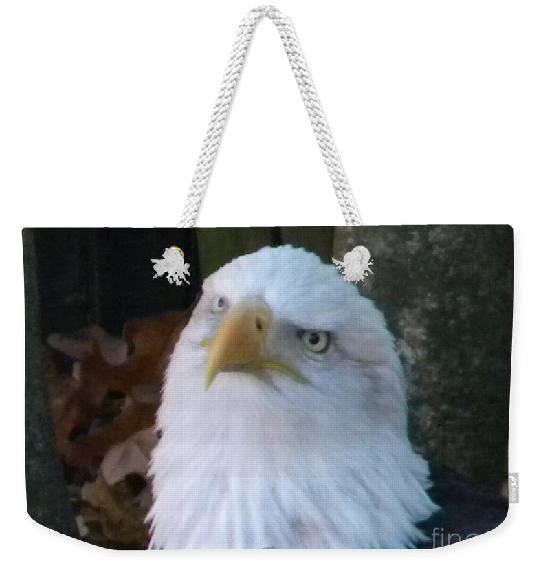Eagle Weekender Tote Bag featuring the photograph Eagle Head by Nathanael Smith