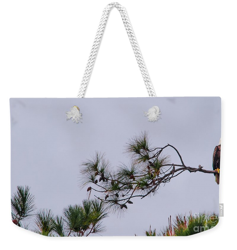 Eagle Weekender Tote Bag featuring the photograph Eagle In The Pines by Scott Hervieux