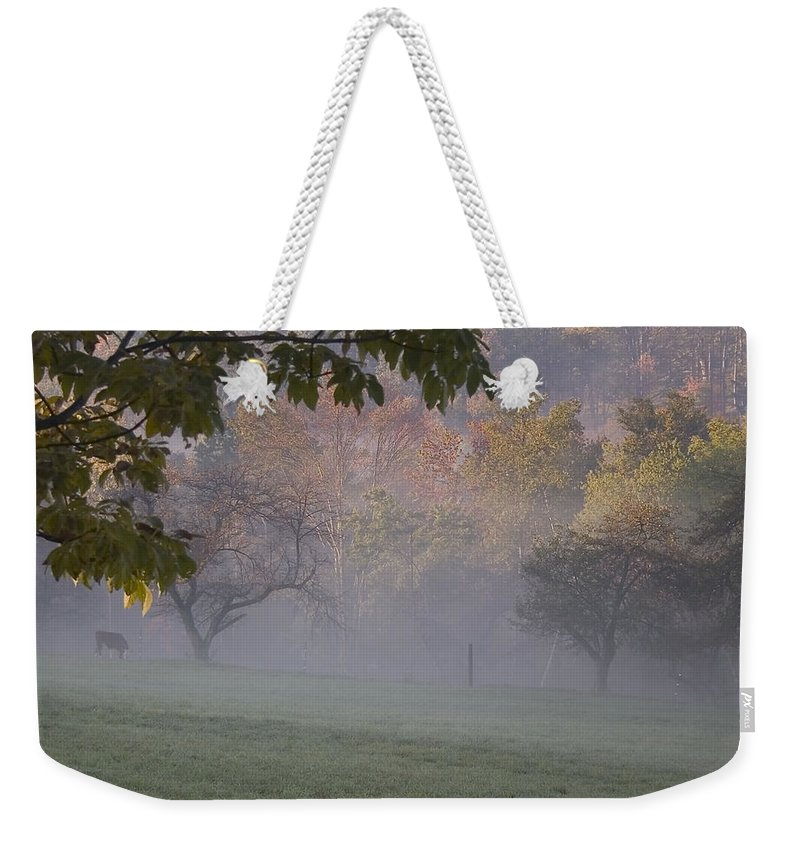 Landscape Weekender Tote Bag featuring the photograph Early Morning Country by Karol Livote