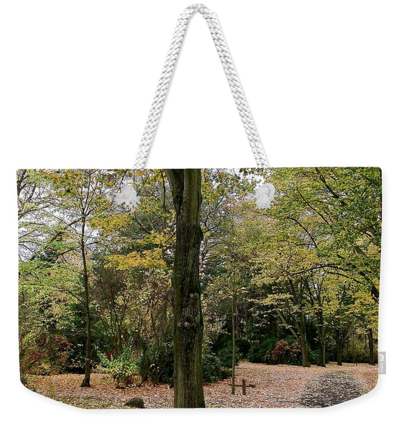 Photography Weekender Tote Bag featuring the photograph Earth Day Special - Bench In The Park by Ivy Ho