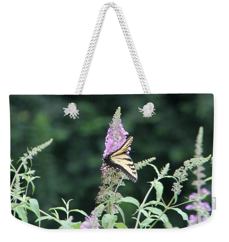 Butterfly Weekender Tote Bag featuring the photograph Eastern Tiger Swallowtail Butterfly - Featured In Wildlife Group by Ericamaxine Price