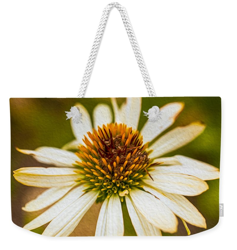 North Cascades Weekender Tote Bag featuring the painting Echinacea Fading Beauty by Omaste Witkowski