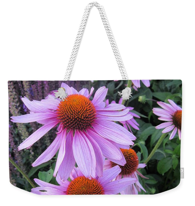 Flowers Weekender Tote Bag featuring the photograph Echinacea Purpurea by Rosita Larsson