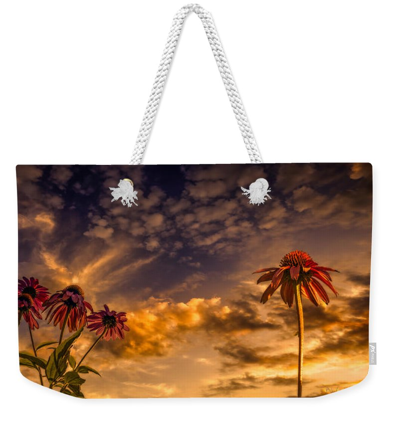 Flower Weekender Tote Bag featuring the photograph Echinacea Sunset by Bob Orsillo