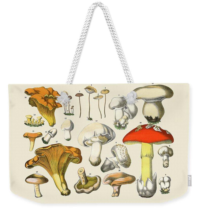 White Background Weekender Tote Bag featuring the digital art Edible Mushrooms, Victorian Botanical by Bauhaus1000