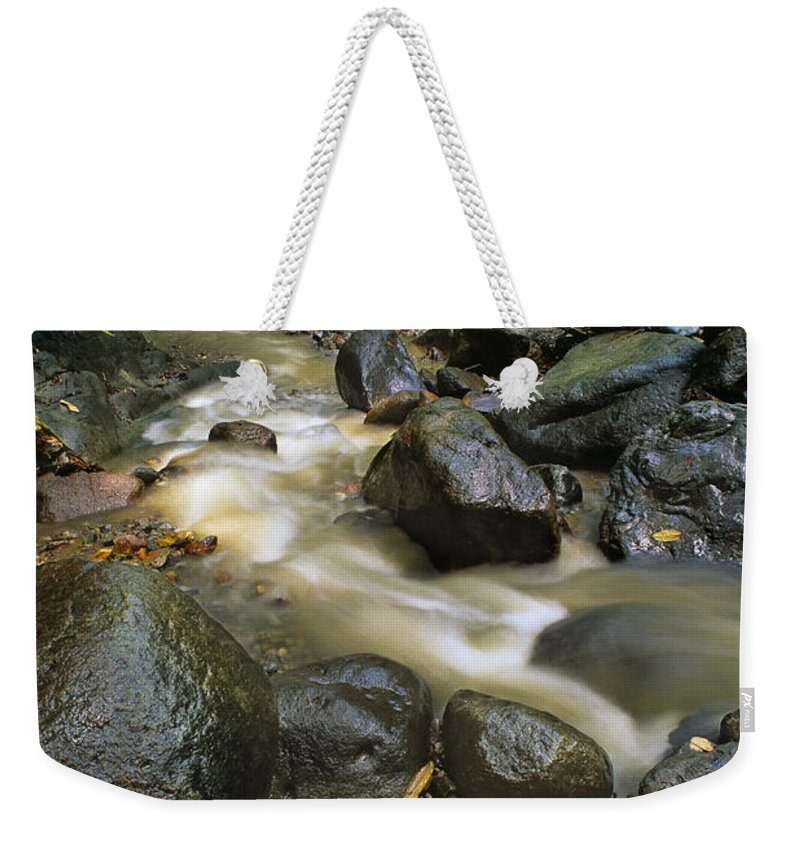 Caribbean Weekender Tote Bag featuring the photograph Edmond Forest Reserve On Saint Lucia by Dave Welling