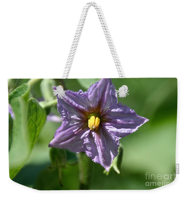 Flower Weekender Tote Bag featuring the photograph Egg Plant Blossom by Susan Herber