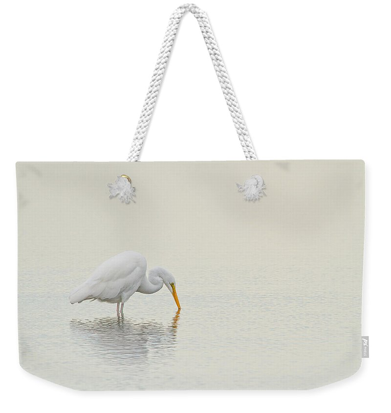 Great Egret Weekender Tote Bag featuring the photograph Egret Finds Himself by Karol Livote