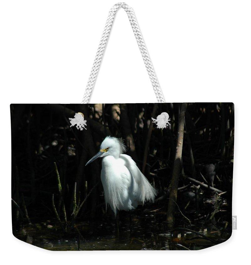 Egret Weekender Tote Bag featuring the photograph Egret Of Sanibel 2 by David Weeks