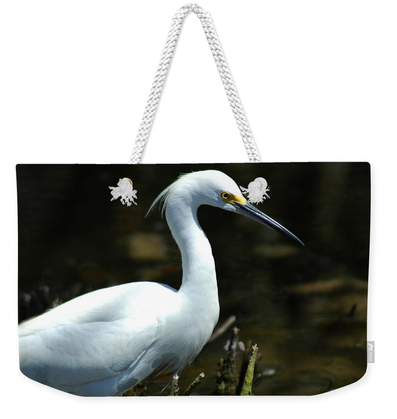 Egret Weekender Tote Bag featuring the photograph Egret Of Sanibel 4 by David Weeks