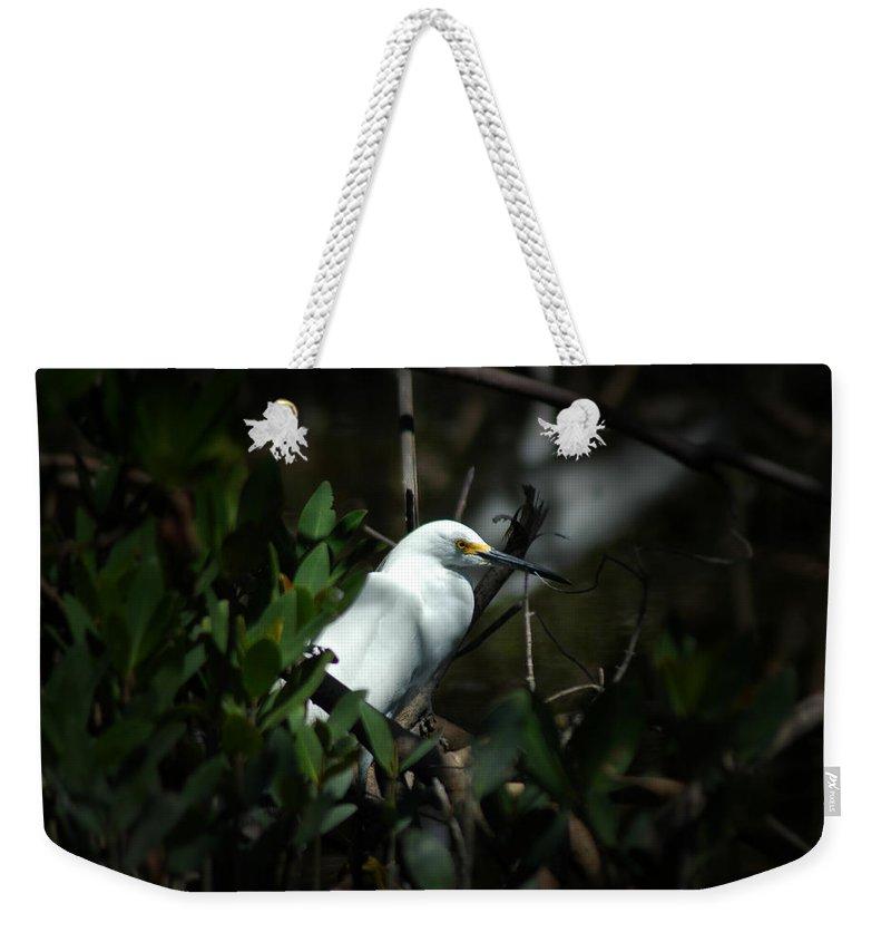 Egret Weekender Tote Bag featuring the photograph Egret Of Sanibel 5 by David Weeks
