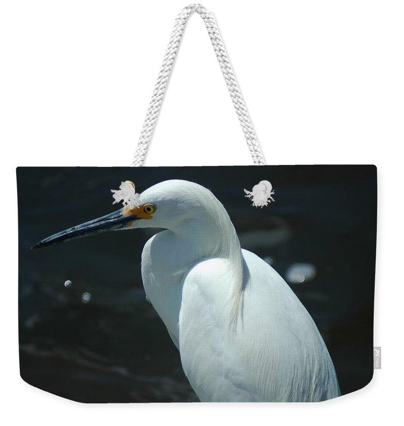 Egret Weekender Tote Bag featuring the photograph Egret Of Sanibel 6 by David Weeks