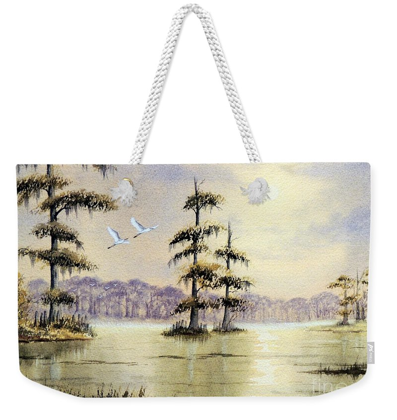 Florida Paintings Weekender Tote Bag featuring the painting Egrets Over Wakulla Springs by Bill Holkham