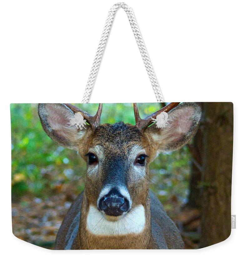 Whitetail Weekender Tote Bag featuring the photograph Eight Point Face To Face by Michael Peychich