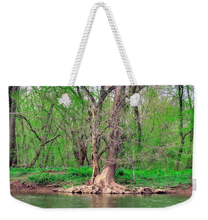 Elder Weekender Tote Bag featuring the photograph Elder Tree by Art Dingo