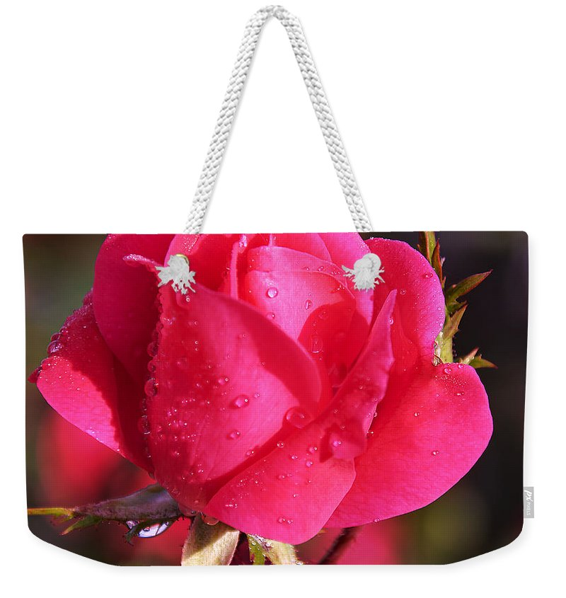 Electron Tea Rose Weekender Tote Bag featuring the photograph Electron Tea Rose by Paul Cannon