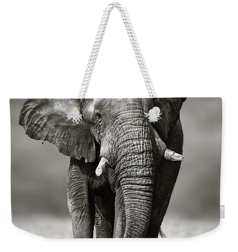 Sandy Photographs Weekender Tote Bags