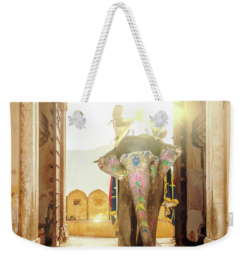 Working Animal Weekender Tote Bag featuring the photograph Elephant At Amber Palace Jaipur,india by Mlenny