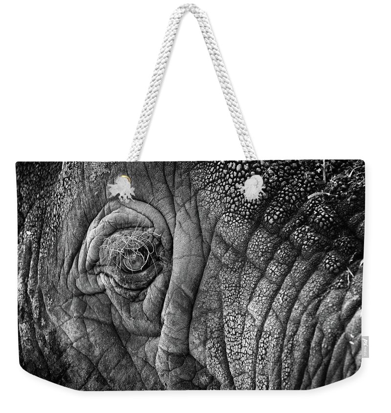 Africa Weekender Tote Bag featuring the photograph Elephant Eye by Sebastian Musial