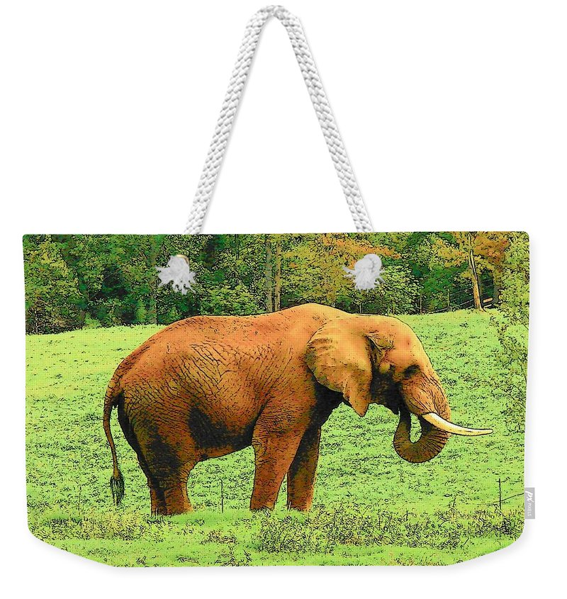 Digital Art Weekender Tote Bag featuring the photograph Elephant by Rodney Lee Williams