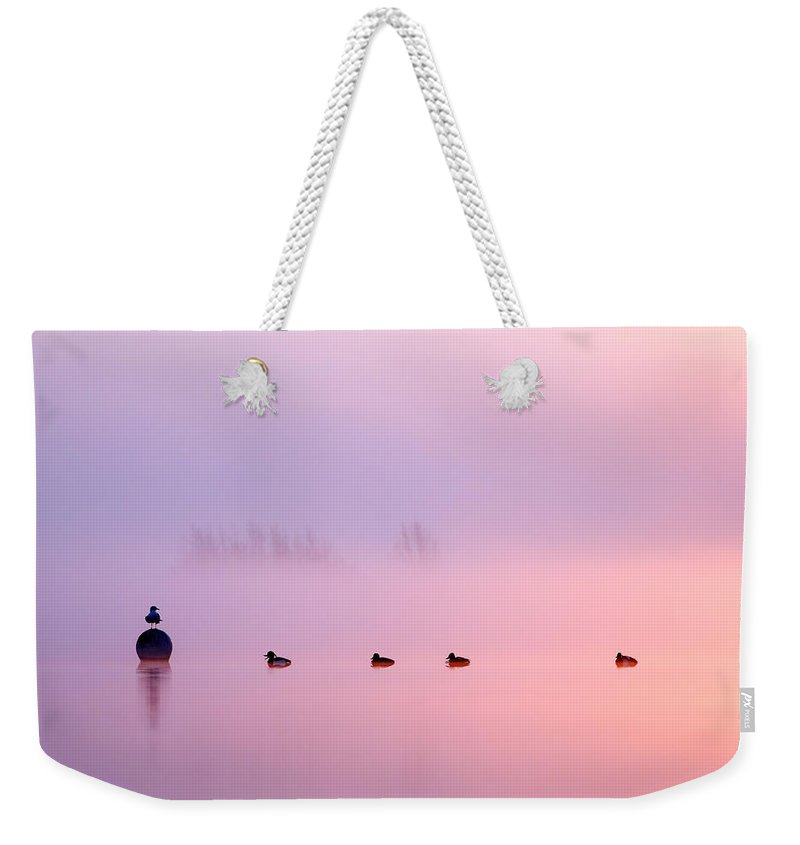 Sunrise Weekender Tote Bag featuring the photograph Empty Spaces 2 - Sunrise In The Mist by Roeselien Raimond