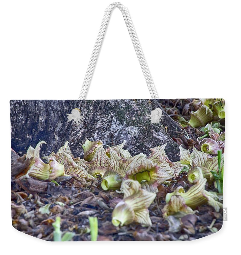 End-of-life. Flowers Weekender Tote Bag featuring the photograph End-of-life V5 by Douglas Barnard