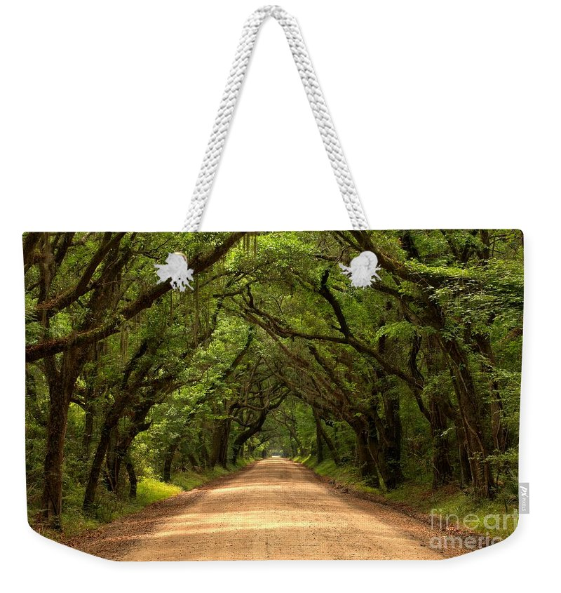 Avenue Of The Oaks Weekender Tote Bag featuring the photograph Endless Oaks by Adam Jewell