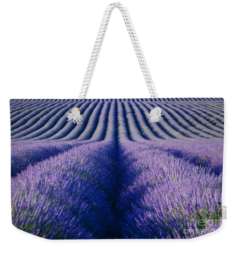 Lavender Weekender Tote Bag featuring the photograph Endless Rows by Brian Jannsen
