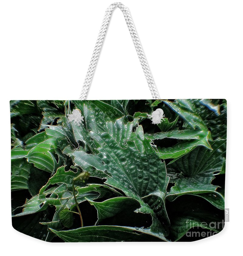 Fleur Weekender Tote Bag featuring the photograph English Country Garden - Series V by Doc Braham