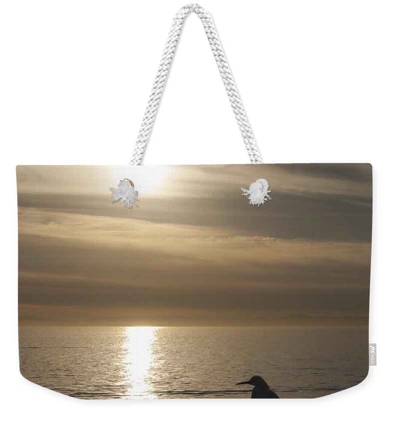 Snowy Egret Weekender Tote Bag featuring the photograph Enjoying The View by Chris Brannen