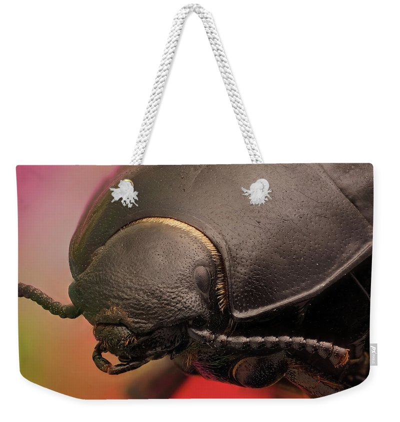 Focus Stacking Weekender Tote Bag featuring the photograph Erodius Sp. 5x by Javier Torrent - Vwpics