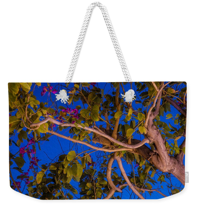 Blue Weekender Tote Bag featuring the painting Evening Blues by Omaste Witkowski
