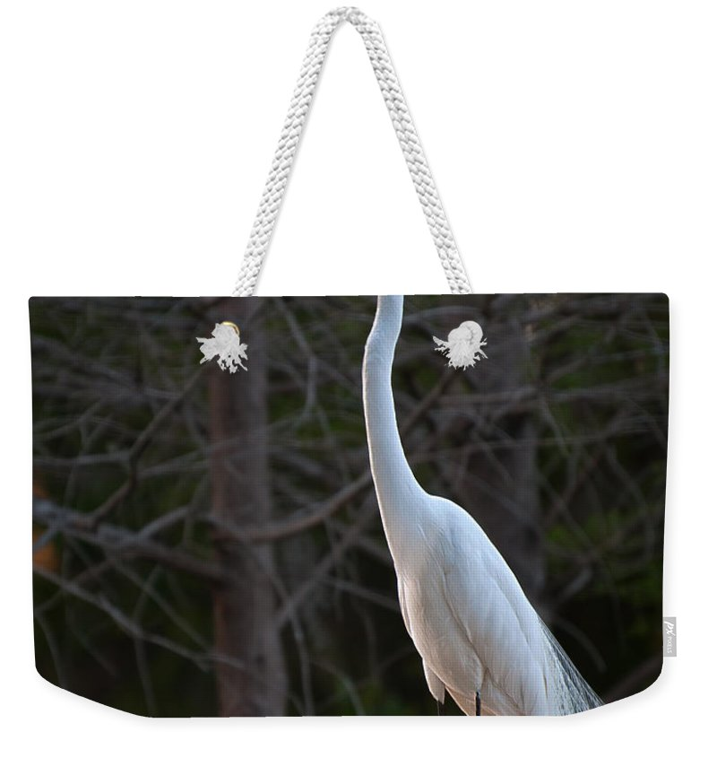 Great Weekender Tote Bag featuring the photograph Evening Egret 2 Vertical by Photos By Cassandra