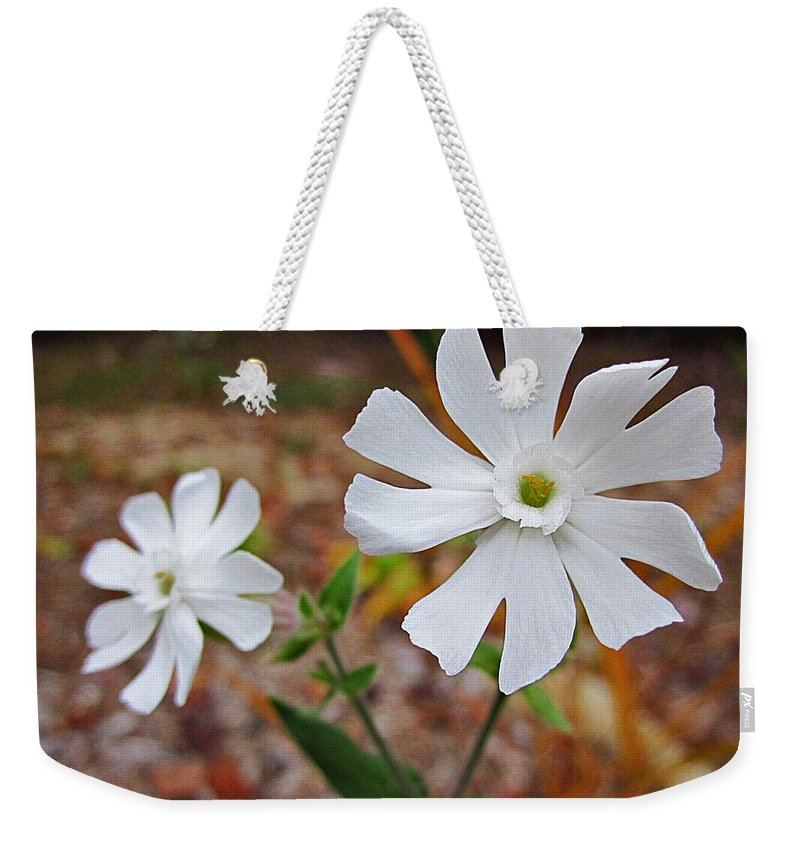 Evening Lychnis Weekender Tote Bag featuring the photograph Evening Lychnis by MTBobbins Photography