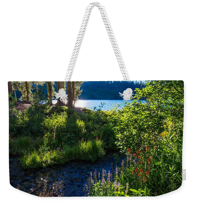 Lake Weekender Tote Bag featuring the photograph Evening Shadows At Lake George by Lynn Bauer