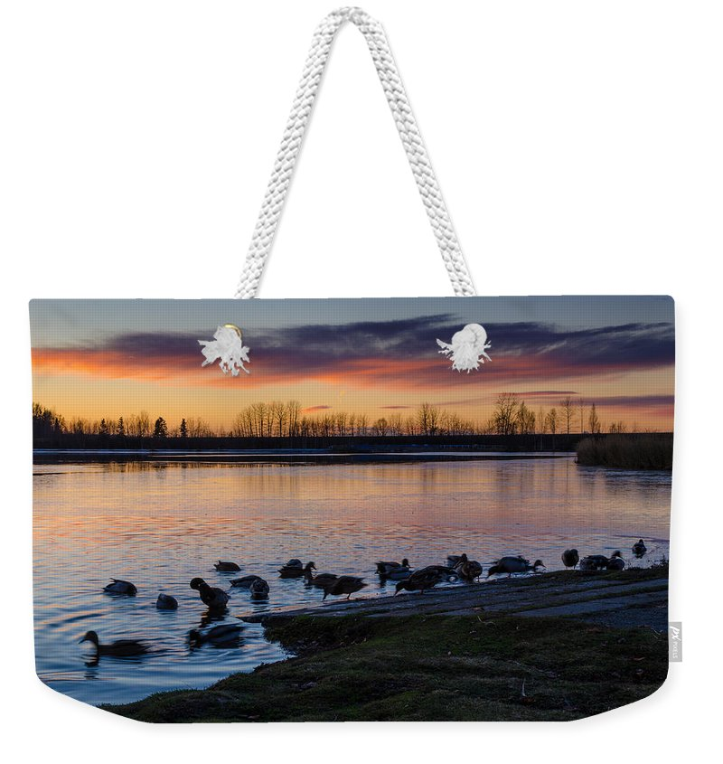 Sunset Weekender Tote Bag featuring the photograph Evening Swim by Nikolai Martusheff