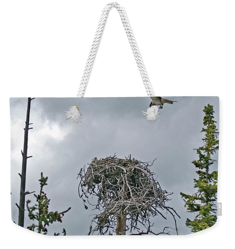 Bird Weekender Tote Bag featuring the photograph Ever Graceful Vertical by Jeremy Rhoades