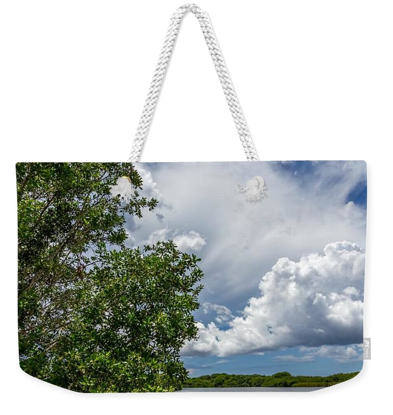 Everglades Weekender Tote Bag featuring the photograph Everglades 0266 by Rudy Umans