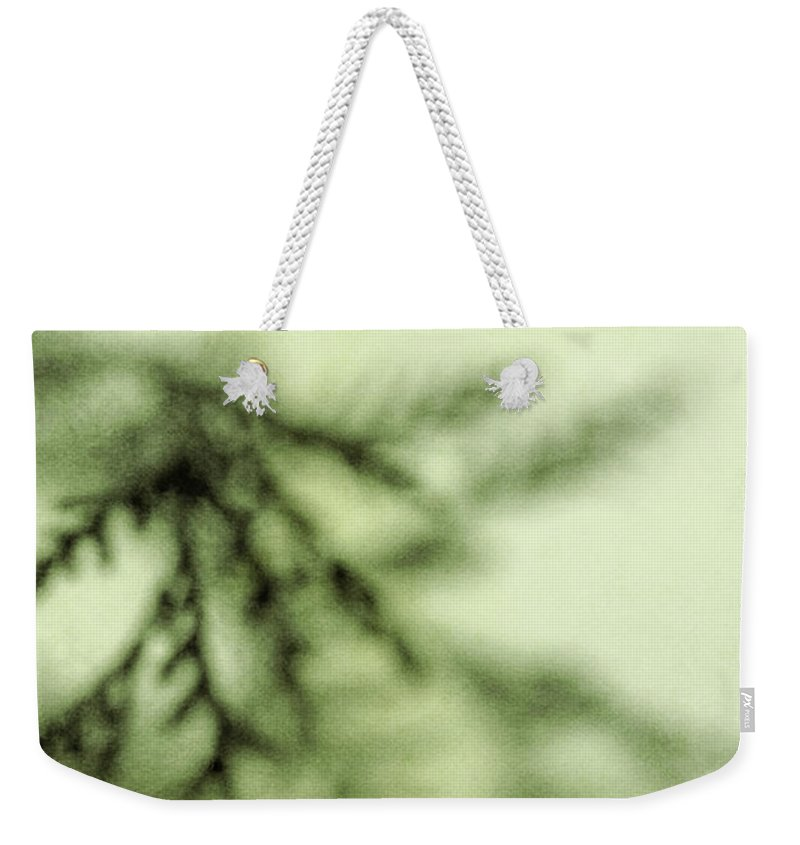 Tree Weekender Tote Bag featuring the photograph Evergreen by Margie Hurwich