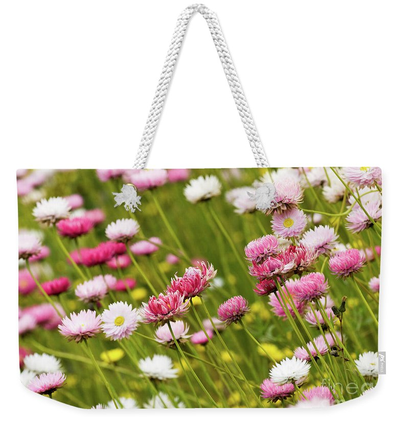 Everlastings Weekender Tote Bag featuring the photograph Everlastings by Rick Piper Photography