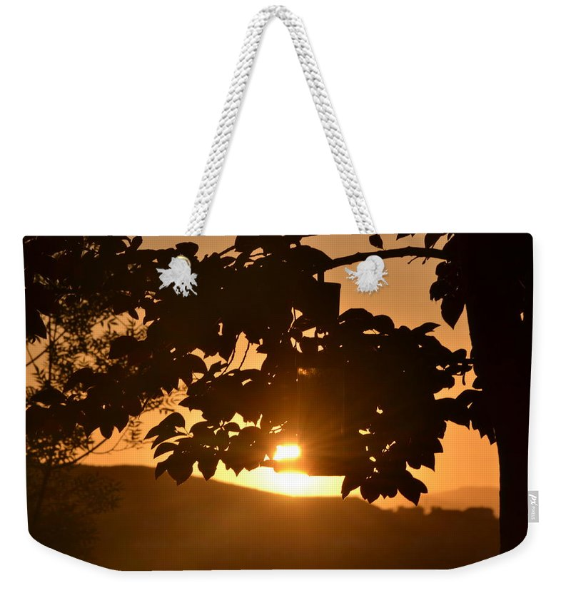 Everything Is Okay Weekender Tote Bag featuring the photograph Everything Is Okay by Christine Owens